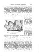 Pàgina 1117