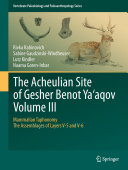 The Acheulian Site of Gesher Benot Ya'aqov Volume III