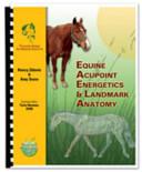 Equine Acupoint Energetics and Landmark Anatomy