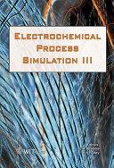 Electrochemical Process Simulation III
