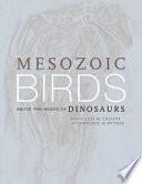 Mesozoic Birds