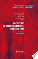 Lectures in Supercomputational Neuroscience Book