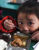 An Ambitious Development Goal Ending Hunger And Undernutrition By 2025 Book