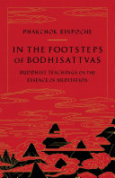 In the Footsteps of Bodhisattvas Pdf/ePub eBook