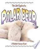 The Life Cycle Of A Polar Bear