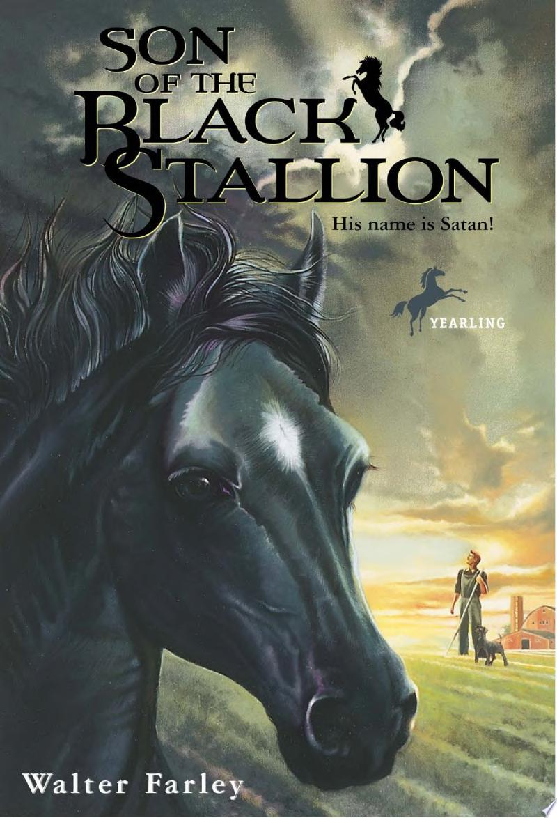 Son of the Black Stallion banner backdrop