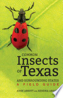 Common Insects of Texas and Surrounding States