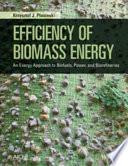 Efficiency of Biomass Energy