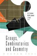 Groups, Combinatorics and Geometry