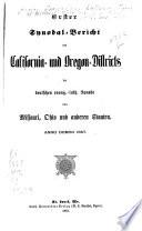 Synodal-Bericht