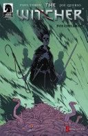 The Witcher: Fox Children #2
