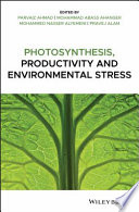 Photosynthesis  Productivity  and Environmental Stress