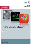 Holistic bioprocess engineering of antibody fragment secreting Bacillus megaterium