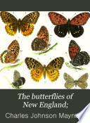 The Butterflies of New England