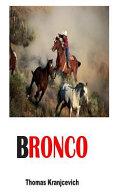 Bronco Book PDF