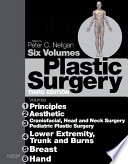 Plastic Surgery E-Book: 6 - Volume Set