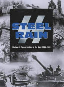 SS Steel Rain