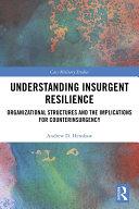 Understanding Insurgent Resilience Pdf/ePub eBook
