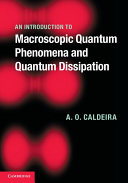 An Introduction to Macroscopic Quantum Phenomena and Quantum Dissipation