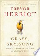 Grass Sky Song