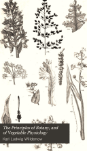 The Principles of Botany, and of Vegetable Physiology