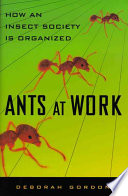"""""""Ants at Work: How an Insect Society is Organized"""" by Deborah M. Gordon, Michelle Schwengel"""