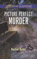 Picture Perfect Murder Book