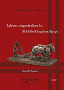 Labour Organisation in Middle Kingdom Egypt