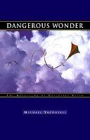 Dangerous Wonder Book