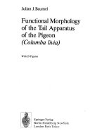 Functional Morphology of the Tail Apparatus of the Pigeon (Columba livia)