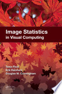 Image Statistics in Visual Computing