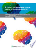 Plasticity and Reconstruction of Neural Network in Brain Injury