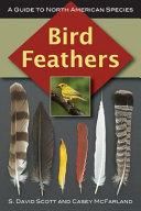 Bird Feathers Book