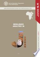 Resilience analysis in Jordan 2013