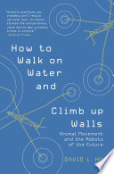 """How to Walk on Water and Climb up Walls"" by David Hu"