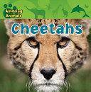 Cheetahs [Pdf/ePub] eBook