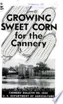 Cannery Row Pdf/ePub eBook