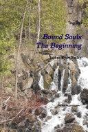 Bound Souls The Beginning ebook