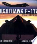 Nighthawk F 117 Stealth Fighter