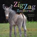 ZigZag ZooBorns! Pdf/ePub eBook