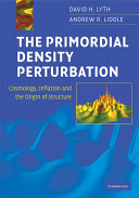 The Primordial Density Perturbation