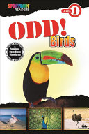 Odd! Birds