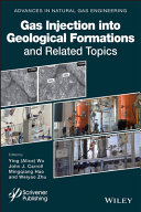 Gas Injection into Geological Formations and Related Topics Pdf/ePub eBook