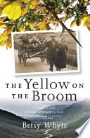 The Yellow on the Broom