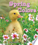 Spring Colors Book