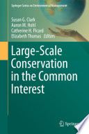 Large Scale Conservation In The Common Interest