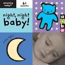Night Night Baby  Book