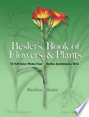 Besler's Book of Flowers and Plants