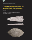 Convergent Evolution in Stone Tool Technology