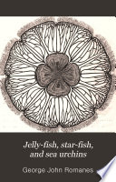 Jelly fish  Star fish and Sea urchins